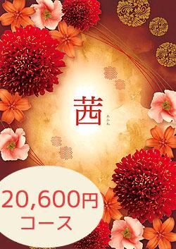 20600円コース