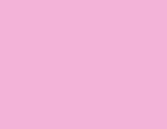 包装紙 ピンク
