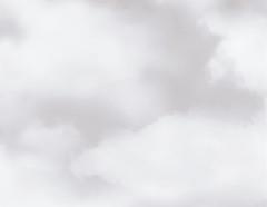 包装紙 【仏事用】クラウド(グレー)