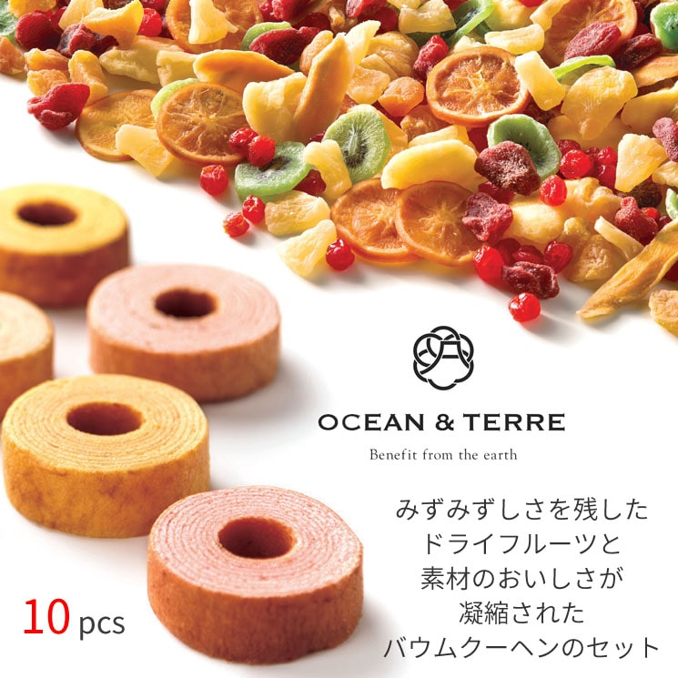 「海と大地の恵みを贈り物に 【OCEAN&TERRE】のドライフルーツとフルーツバウム(10pcs)」詳細説明