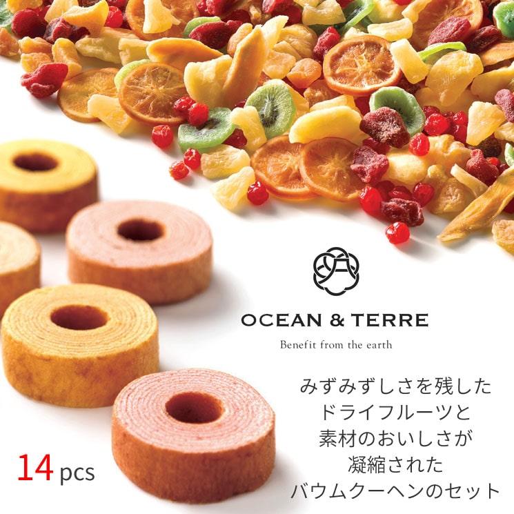 「海と大地の恵みを贈り物に 【OCEAN&TERRE】のドライフルーツとフルーツバウム(14pcs)」詳細説明