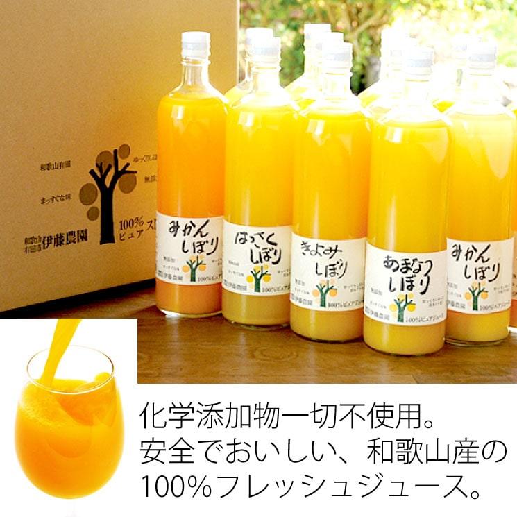 「化学添加物不使用!安心おいしい♪たっぷりフレッシュジュースのファミリーセット(L5本)」詳細説明