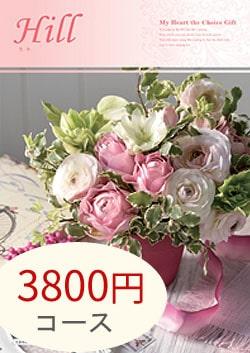 3800円コース