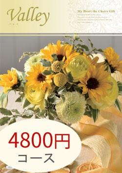 4800円コース