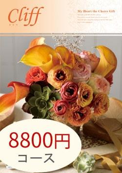 8800円コース