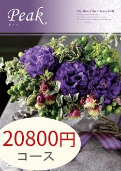 20800円コース