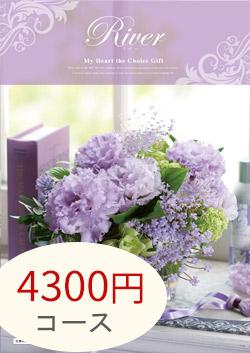 4300円コース