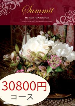 30800円コース