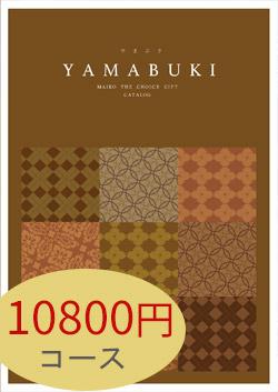 10800円コース