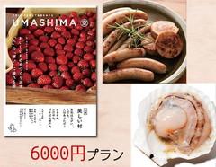 6000円プラン