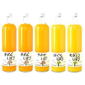 Fresh Fruit Juice(L)